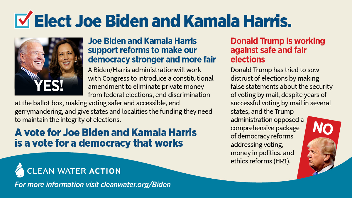 A vote for Biden/Harris is a vote a democracy that works