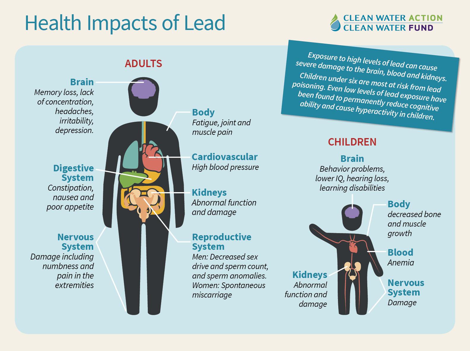 DrinkingWater_Health Impacts of Lead.jpg