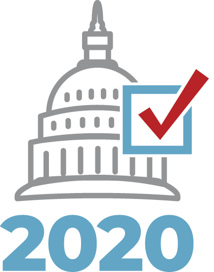 2020 elections graphic