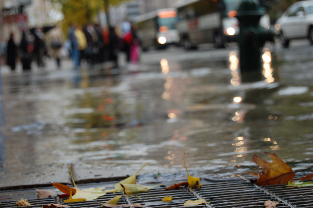 flooded sewer grate / photo: flickr.com/ghost_bear CC BY-NC-ND 2.0