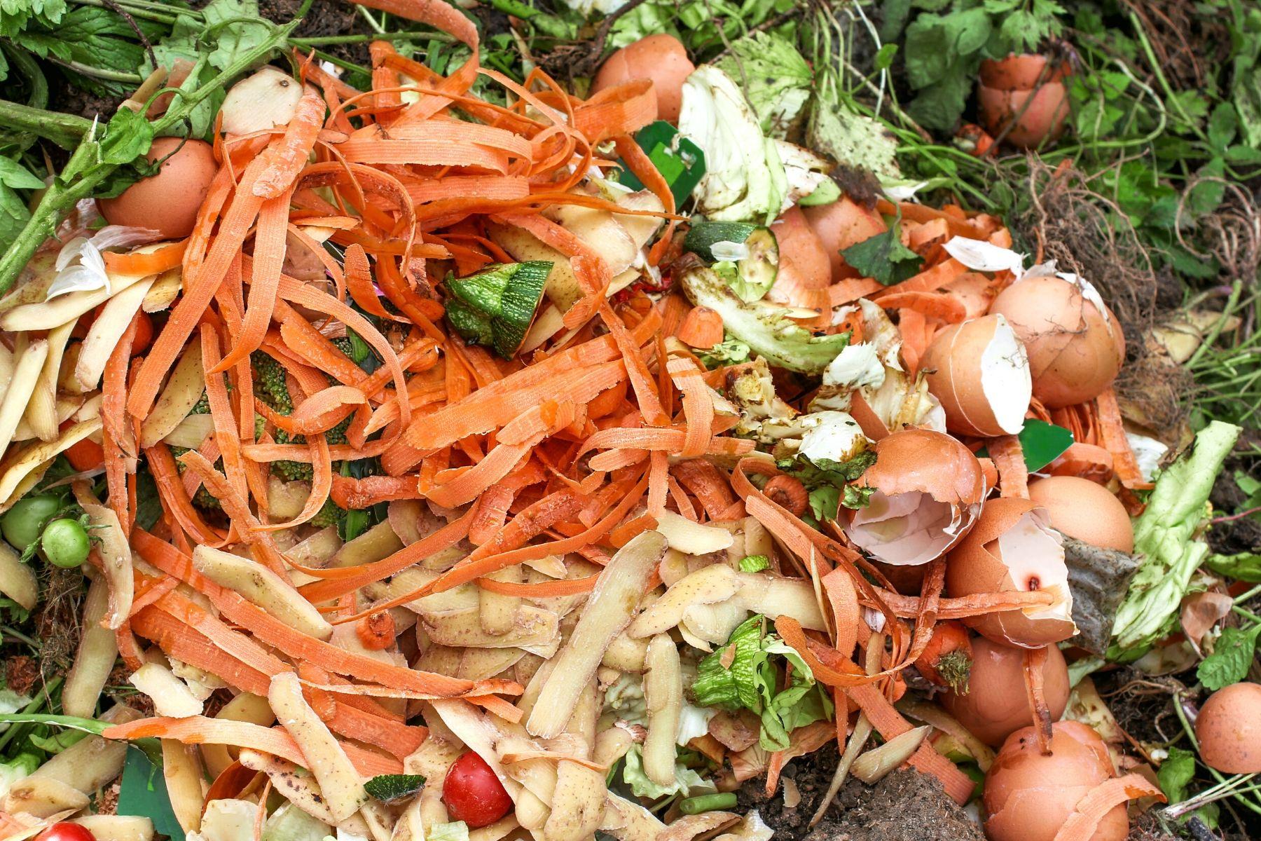 NJ_Food Waste Source: Canva