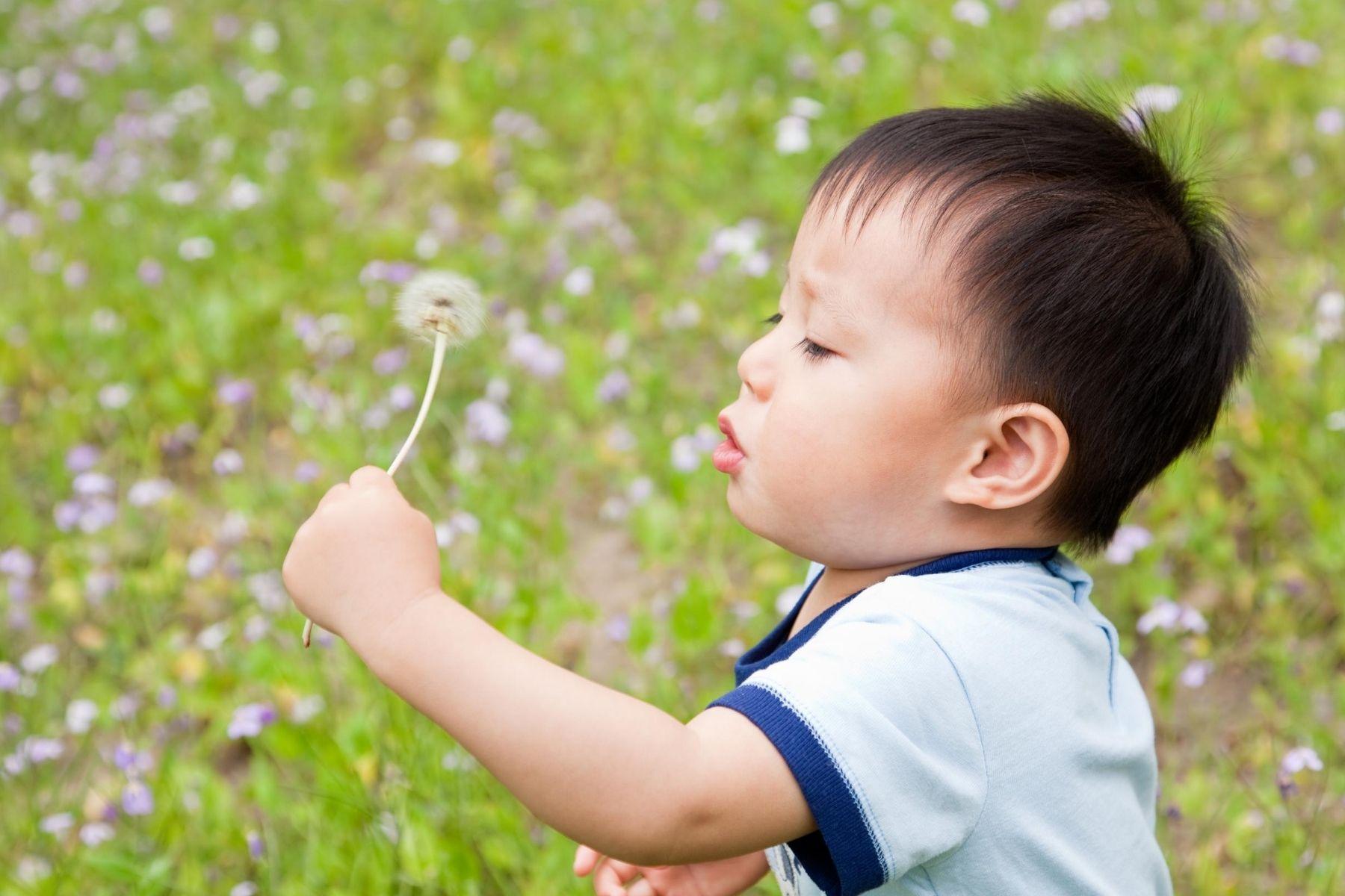 Pesticide_Kid_Dandelion_Source: Canva