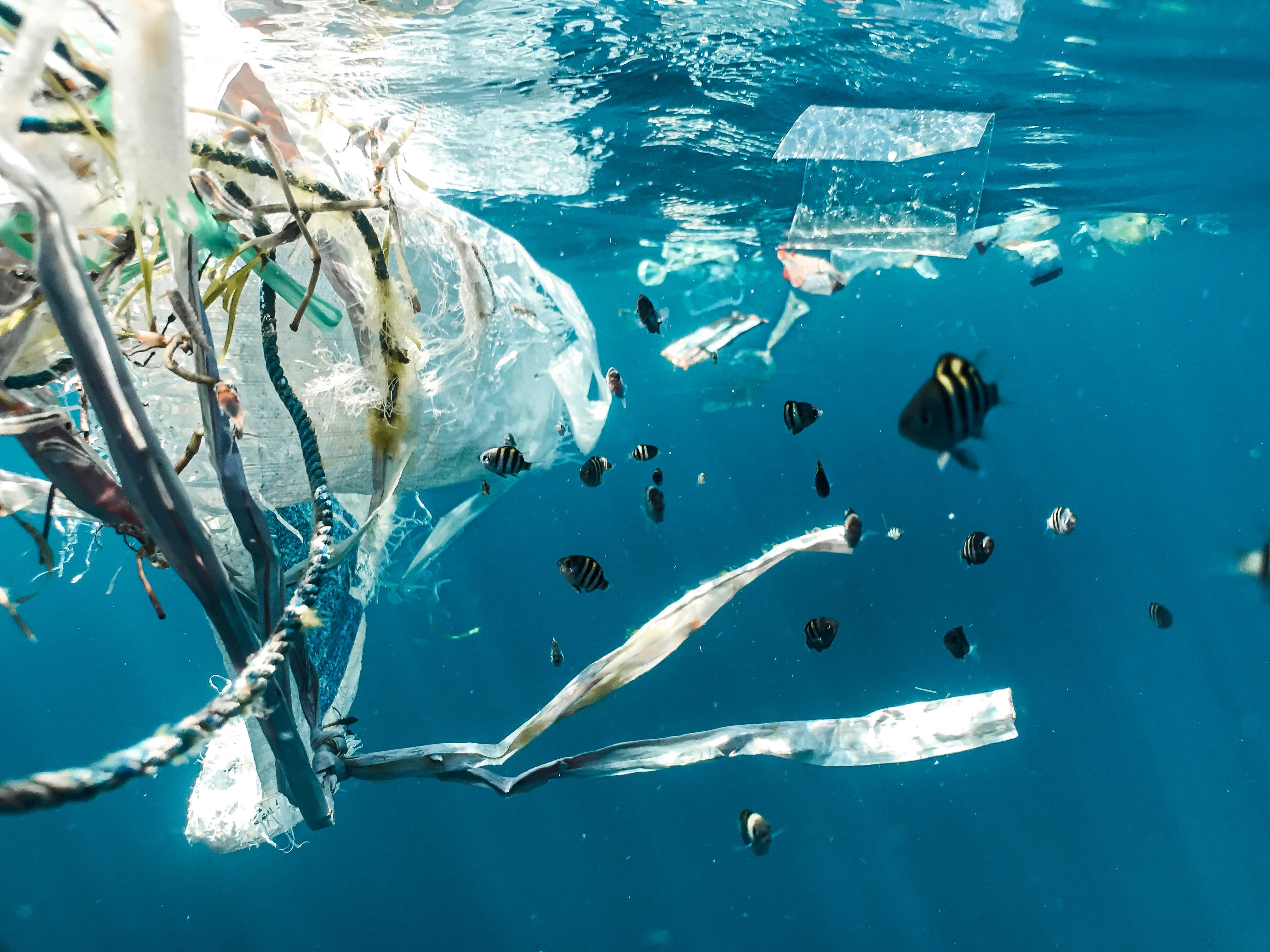 Plastic Pollution - photo by Naja Bertolt Jenzen-BJUoZu0mpt0-unsplash.jpg