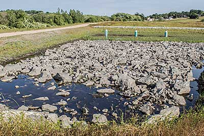 riparian buffer at kempenaar_green infrastructure_rhode island_Photo by Jessica Pohl