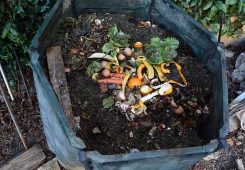 composting-container-istock-curtoicurto.jpg