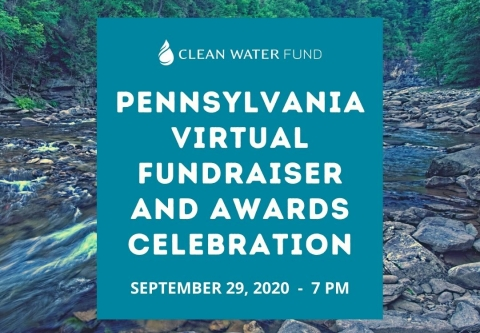 PA_CWF_Virtual Celebration 2020_Canva.jpg