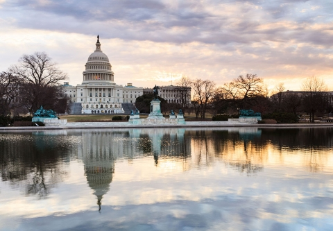 U.S. Capitol Building / photo: shutterstock, Cvandyke