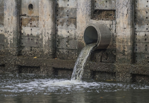 Water discharging from a storm drain. Photo credit: Neophuket / Shutterstock