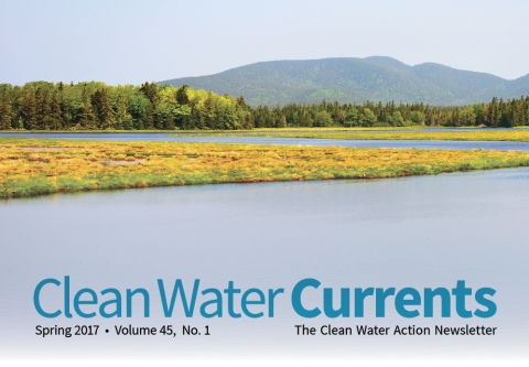 Clean Water Currents - Spring 2017