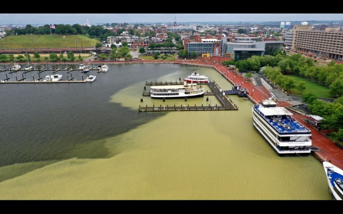 Sediment plume in Baltimore's Inner Harbor. Photo credit: Baltimore Sun.