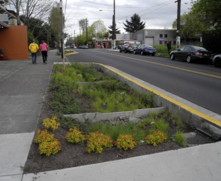 Green_Infrastructure_National_Bioswale_Credit_Dianne_Yee_Creative_Commons.jpg