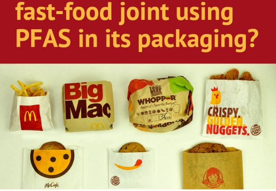 PFAS_Fast food graphic - no letters.jpg