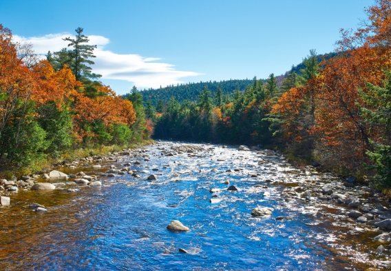 Swift River, White Mountain National Forest. Credit: haveseen / Shutterstock