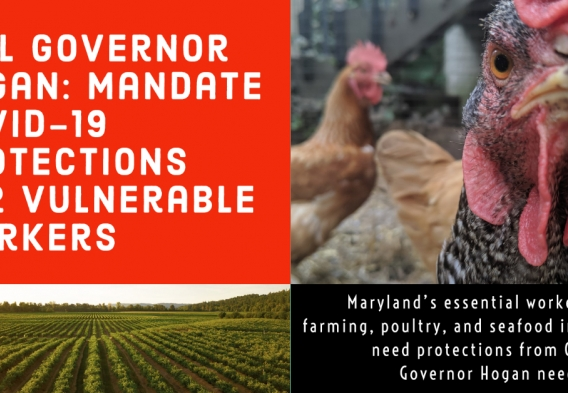Tell Governor Hogan: mandate covid-19 protections for vulnerable workers.